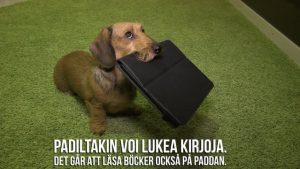 Lukukoira Sylvi ja Koko kansa lukee – Hela folket läser 2017