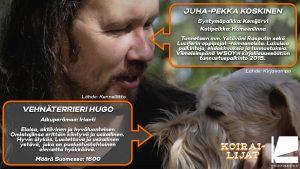 Koirailijat - JP Koskinen ja vehnäterrieri Hugo