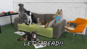 READing Dog Sylvi and her book club