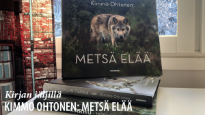 Kirjan_jaljilla_16_Metsa_elaa